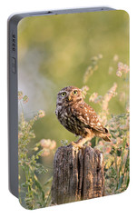 The Little Owl Portable Battery Charger by Roeselien Raimond