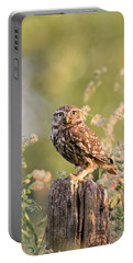 The Little Owl Portable Battery Charger