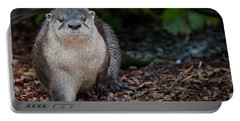 The Otter Cometh Portable Battery Charger