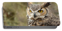 Portable Battery Charger featuring the photograph The Owl by Lucinda Walter