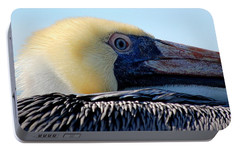 Portable Battery Charger featuring the photograph The Pelican by AJ  Schibig