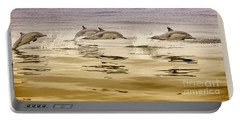Dolphin Canvas Print, Photographic Print, Art Print, Framed Print, Greeting Card, Iphone Case, Portable Battery Charger