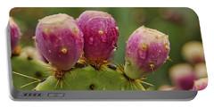 The Prickly Pear  Portable Battery Charger
