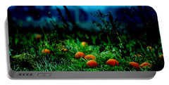 Portable Battery Charger featuring the photograph The Pumpkin Patch by Lesa Fine
