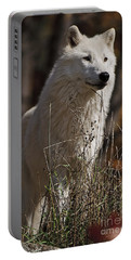 Portable Battery Charger featuring the photograph The Sentinel by Wolves Only