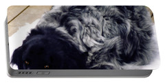 Portable Battery Charger featuring the photograph The Shaggy Dog Named Shaddy by Marian Cates