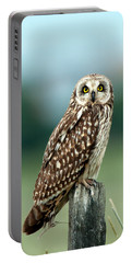 The Short-eared Owl  Portable Battery Charger