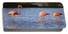 The Three Flamingos Portable Battery Charger by Adam Romanowicz