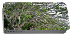 Portable Battery Charger featuring the photograph The Tree by Andrea Anderegg