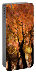 The Trees Dance As The Sun Smiles Portable Battery Charger by Don Schwartz