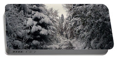 Portable Battery Charger featuring the photograph The Way In Snow by Felicia Tica