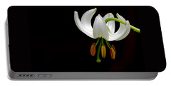 The White Form Of Lilium Martagon Named Album Portable Battery Charger