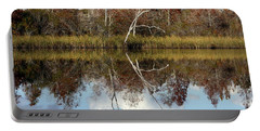 Portable Battery Charger featuring the photograph The Winter Tree by Debra Forand