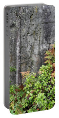Portable Battery Charger featuring the photograph Thetis In Fall by Cheryl Hoyle