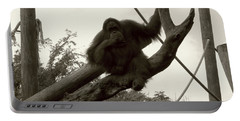 Portable Battery Charger featuring the photograph Thinking Of You Sepia by Joseph Baril