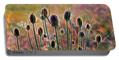 Thistles With Sunset Light Portable Battery Charger