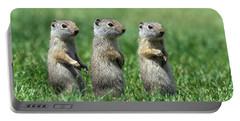 Three Baby Uinta Ground Squirrles Portable Battery Charger
