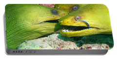Three Eels Portable Battery Charger