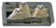 Three Great-horned Owl Chicks Portable Battery Charger