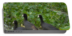 Three Little Birds Portable Battery Charger