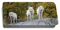 Three Looking At Me Portable Battery Charger