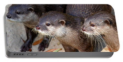 Three Otters Portable Battery Charger by Daniel Eskridge