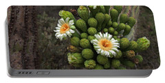Three Saguaro Blossoms And Many Buds Portable Battery Charger