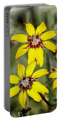 Three Sister Wildflowers Portable Battery Charger