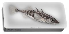 Three-spined Stickleback Gasterosteus Aculeatus - Stichling - L'epinoche - Espinoso - Kolmipiikki Portable Battery Charger