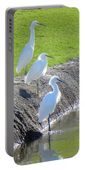 Portable Battery Charger featuring the photograph Three Stooges by Deb Halloran
