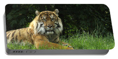 Portable Battery Charger featuring the photograph Tiger At Rest by Lingfai Leung