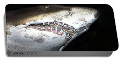 Portable Battery Charger featuring the photograph Tiger Shark by Sergey Lukashin