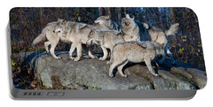 Timber Wolf Pack Portable Battery Charger