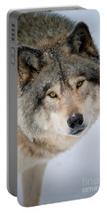 Timber Wolf Pictures 255 Portable Battery Charger