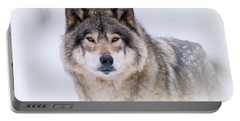 Timber Wolf Pictures 256 Portable Battery Charger