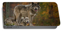 Timber Wolf Pictures 410 Portable Battery Charger