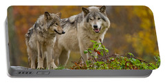 Timber Wolf Pictures 411 Portable Battery Charger