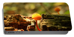 Tiny Mushroom Portable Battery Charger by Melissa Petrey
