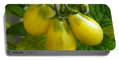 Tomato Triptych Portable Battery Charger