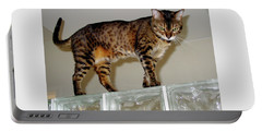 Portable Battery Charger featuring the photograph Tora On Glass II by Phyllis Kaltenbach
