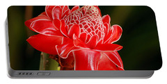Torch Ginger Portable Battery Charger