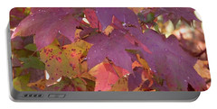 Portable Battery Charger featuring the photograph Traces Of Fall by Andrea Anderegg