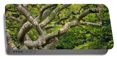 Tree #1 Portable Battery Charger by Stuart Litoff