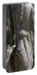Tree Bark No. 3 Portable Battery Charger by Lynn Palmer