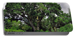 Tree By The River Portable Battery Charger by Lydia Holly