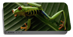 Tree Frog 16 Portable Battery Charger by Bob Christopher