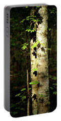 Tree In The Woods Portable Battery Charger by Pamela Critchlow