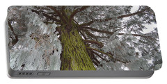 Portable Battery Charger featuring the photograph Tree In Winter by Felicia Tica