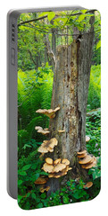 Tree Remnant Portable Battery Charger