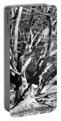 Tree Study In Black N White Portable Battery Charger